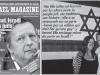 Le chanteur Renaud : «Israël est la plus belle démocratie du monde»
