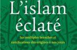 L'islam éclaté : ses multiples branches et ramifications (Henri de Saint-Bon)