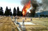 This picture taken by eyewitness Martha Guidoni with her cellphone and provided by the Montana Standard shows a small, singe-engine plane bursting into flames in Holy Cross Cemetery on March 22, 2009 just south of the Bert Mooney Airport in Butte, Montana. All 17 people on board were killed, many of them children heading on a skiing holiday, federal aviation officials said. The plane, a single engine turboprop, was heading from Oroville, California, just north of San Francisco on a 900-mile (1,500-kilometer) journey to Bozeman, Montana. EDS NOTE: Best quality available.         AFP PHOTO/Martha Guidoni via the Montana Standard/HO          ++RESTRICTED TO EDITORIAL USE - MANDATORY CREDIT: MARTHA GUIDONI VIA THE MONTANA STANDARD++ (Photo credit should read MARTHA GUIDONI/AFP/Getty Images)   Original Filename: Was2238766.jpg