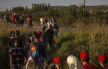 Le scénario apocalyptique du G7 Santé: un milliard de réfugiés climatiques d'ici 2050