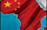 Economie : la Chinafrique est une réalité