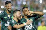 Chapecoense : renaissance d'un club
