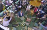 Le parlement ougandais à l'état sauvage