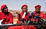 Afrique du Sud : rumeur de lancement du génocide pour fin novembre