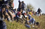 Commission européenne: «Nous veillerons à la sauvegarde des droits des Africains en Italie»