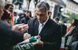 De plus en plus d'Allemands s'installent en Hongrie pour fuir l'immigration