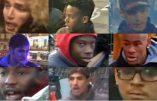 La police belge recherche 9 émeutiers, tous issus du multiculturalisme…