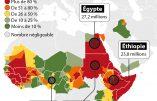 Une Afrique d'excision
