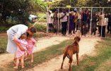 L'Australie prête à accorder des visas humanitaires aux fermiers blancs d'Afrique du Sud victimes de persécutions