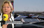 Violences inter-ethniques à Calais ? Le maire dénonce la complicité «de certains No Border ou de certains associatifs»… Comme la franc-maçonnerie ?