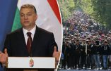 Viktor Orban : « L'immigration sera la fin de l'Europe »