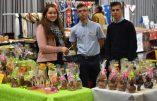 Les artisans à l'honneur à la Fête du Pays Réel (1)