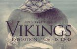 A Nantes du 16 juin au 18 novembre 2018 : expo «Nous les appelons Vikings !»