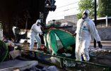 Tuberculose et gale parmi les 2.400 immigrés qui campent à Paris
