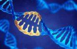 Génétique: La grande illusion