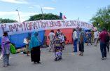 Restriction du droit du sol à Mayotte « où 74 % des enfants naissent de mère étrangère »