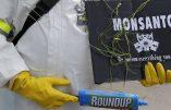 Monsanto condamné à payer 290 millions de dollars à un jardinier