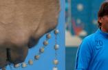 «Je porte toujours mon chapelet avec moi», assume Zlatko Dalic, entraîneur de l'équipe de football croate