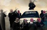 Deux djihadistes néerlandais condamnés pour avoir voulu partir en Syrie