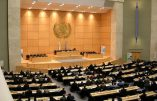 Violente contre-attaque pro-vie à l'ONU