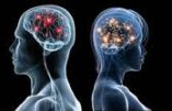 Sale temps pour le gender : le cerveau de l'homme et de la femme sont différents