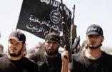 Alors islamiste ou djihadiste en Syrie ?