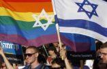 Le gouvernement israélien en faveur de la GPA pour les homosexuels