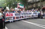 Manifestation en faveur de la Palestine : « Israël assassin, Hollande complice ! »