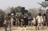 Boko Haram tue  près de 150  personnes au Nord du Nigeria