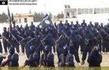 Les djihadistes veulent ouvrir des fronts au Maghreb et obtenir l'allégeance des factions islamistes du Yémen, d'Algérie et de Libye