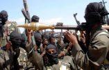 Les djihadistes de Boko Haram attaquent le Cameroun