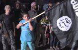 Immersion dans le monde de folie barbare des djihadistes de l'EIIL