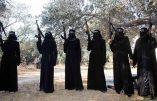 Tunisie : démantèlement d'une cellule de recrutement de femmes pour les terroristes