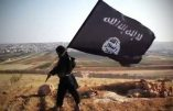 Les djihadistes irakiens de l'EI veulent étendre leur emprise sur les territoires tenus par les Kurdes