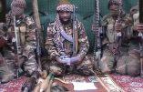 Boko Haram s'empare de nouvelles villes nigérianes et impose la charia