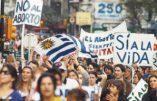 Elections en Uruguay : les évêques appellent à défendre la Vie et la Famille