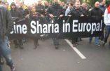 """Cologne : """"Pas de charia en Europe"""" clament des milliers de manifestants"""