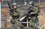 Coups de feu au parlement canadien : au moins un blessé (vidéo)