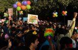 Inde, New Dehli: défilé Gay malgré la loi interdisant les « les actes charnels qui iraient à l'encontre de l'ordre naturel »