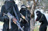 Syrie – Des femmes djihadistes sadiques parfois venues d'Europe