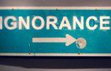 Micro-trottoir de Canal + : l'ignorance, fruit du lavage de cerveau des Français