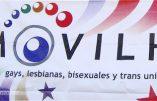 Rappeler que le mariage est l'union d'un homme et d'une femme suffit à être traité d'homophobe – Exemple au Chili