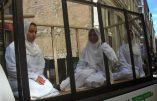 Le calvaire des femmes yézidis aux mains de l'Etat Islamique