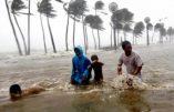 Retour sur les conséquences du typhon Hagupit aux Philippines