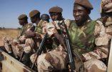 Huit soldats maliens tués par les rebelles touaregs
