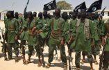 Des Shebab dans un village près de Mogadiscio, le 17 février 2011.