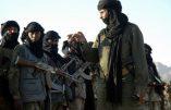 """Fermeture de Guantánamo : djihadiste en Italie pour motifs """"humanitaires"""""""