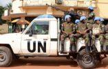 Centrafrique : au moins cinq personnes, dont un Casque bleu, tuées à Bangui