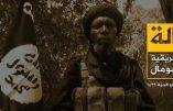 L'Etat Islamique en Afrique de l'Ouest cherche à s'allier les shabab somaliens