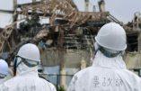 Fukushima : faut-il annuler la Coupe du monde de rugby de 2019 et les JO de 2020 au Japon ?